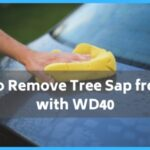 How to Remove Tree Sap from Car with WD40?