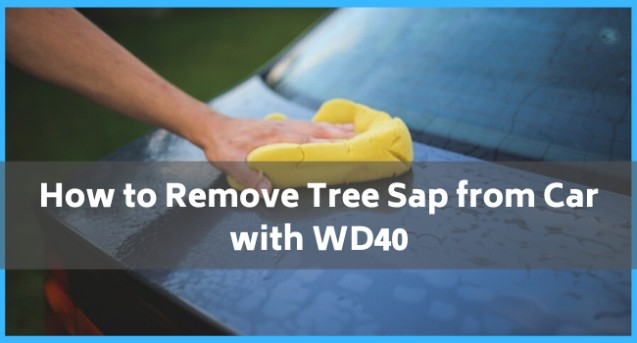 How to Remove Tree Sap from Car with WD40